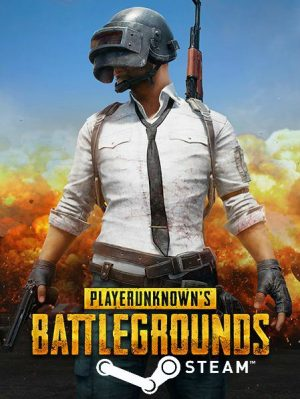 PlayerUnknowns Battlegrounds PUBG Steam Game Key