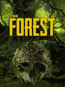 The Forest Steam Gift